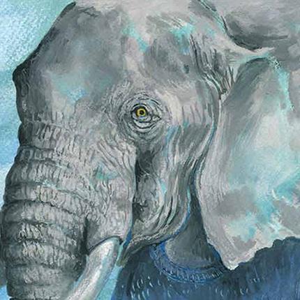 galerie une oreille d elephant dans mon jardin