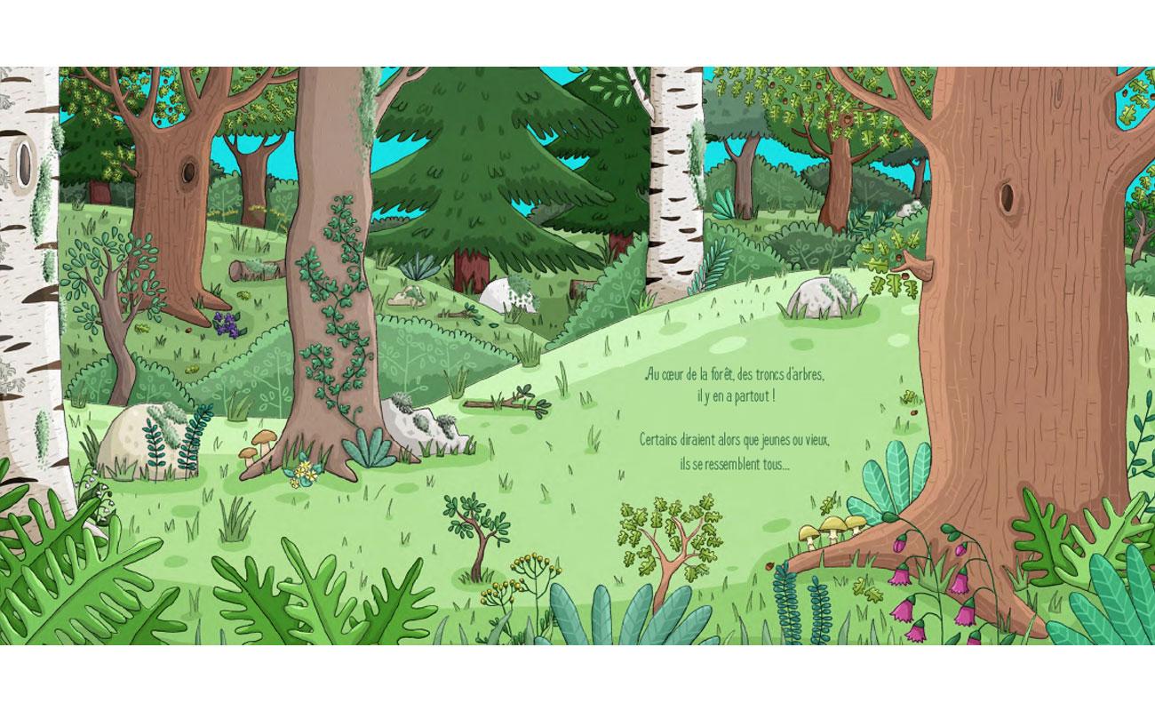 Que nous cache le tronc des arbres ?